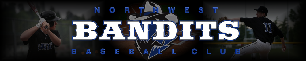 Northwest Bandits Baseball